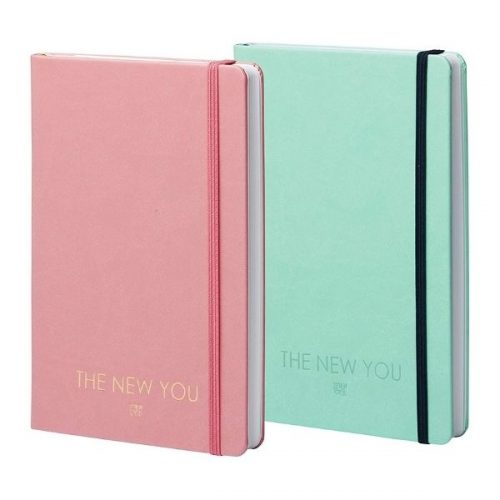 Gift Guide for Health and Fitness Lover_Goal Setter Planner_The new you_ in pink and mint